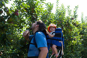 2015-09-07 - Apple Picking at Parlee Farms