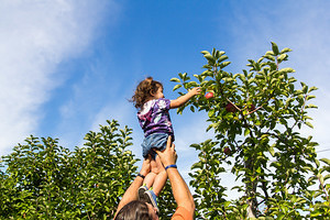2016-09-17 - Apple Picking at Parlee Farm with Gramma K