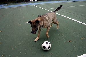 Penny Playing Soccer