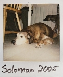Old Polaroids of Penny and Soloman